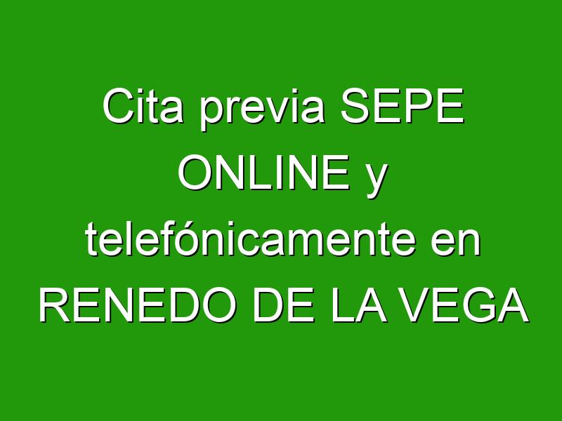Cita previa SEPE ONLINE y telefónicamente en RENEDO DE LA VEGA