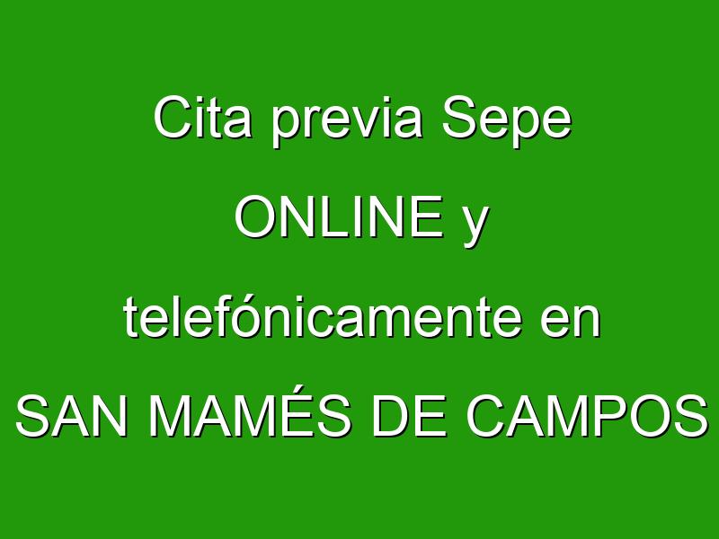 Cita previa Sepe ONLINE y telefónicamente en SAN MAMÉS DE CAMPOS