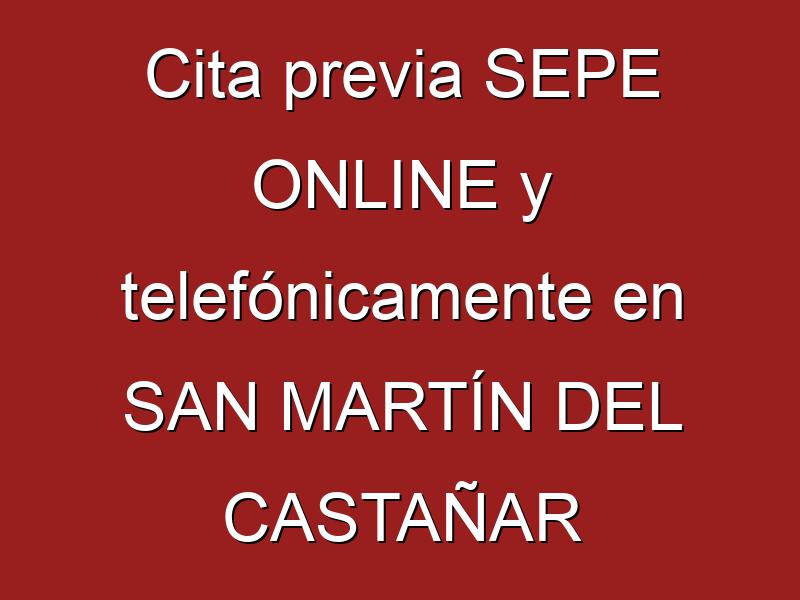 Cita previa SEPE ONLINE y telefónicamente en SAN MARTÍN DEL CASTAÑAR