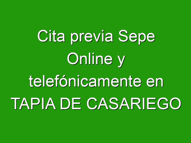 Cita previa Sepe Online y telefónicamente en TAPIA DE CASARIEGO