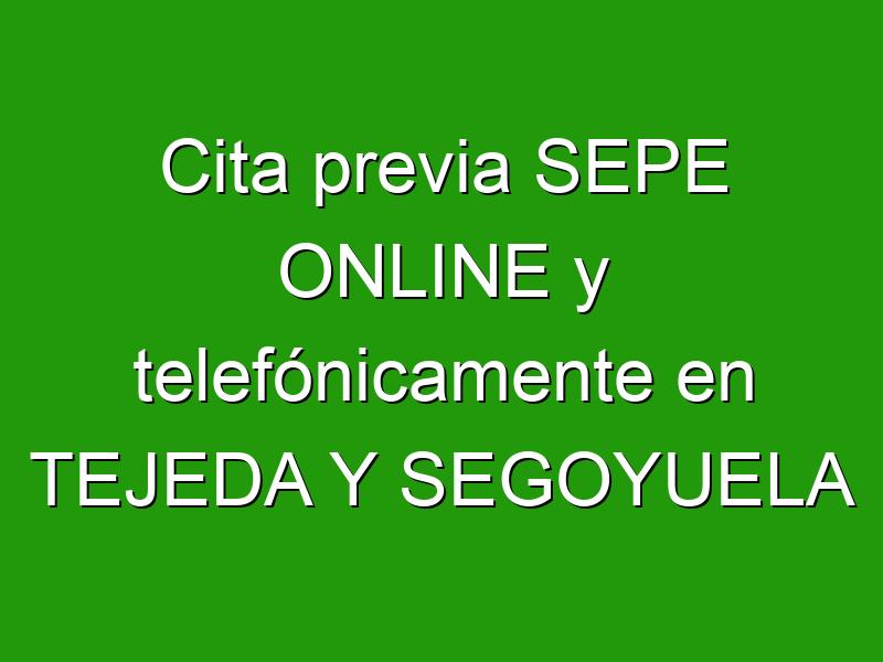 Cita previa SEPE ONLINE y telefónicamente en TEJEDA Y SEGOYUELA