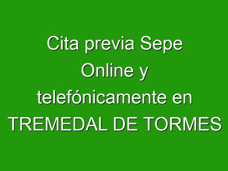 Cita previa Sepe Online y telefónicamente en TREMEDAL DE TORMES