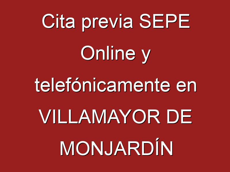 Cita previa SEPE Online y telefónicamente en VILLAMAYOR DE MONJARDÍN