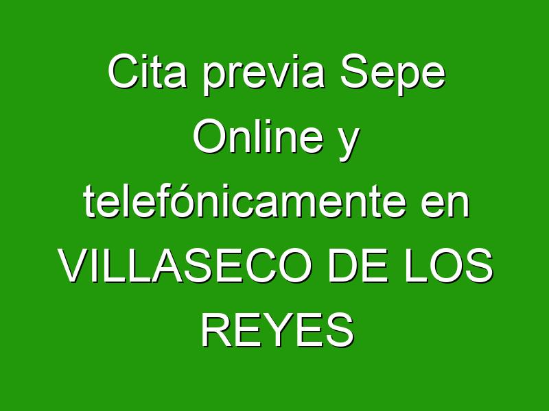 Cita previa Sepe Online y telefónicamente en VILLASECO DE LOS REYES