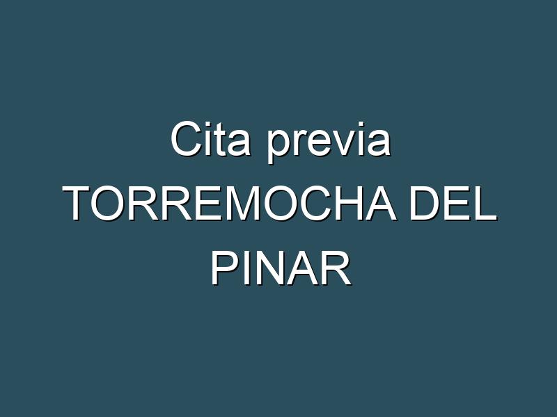 Cita previa TORREMOCHA DEL PINAR