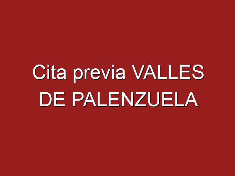 Cita previa VALLES DE PALENZUELA