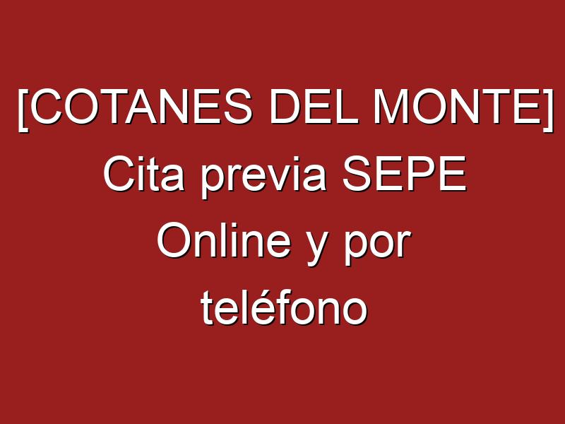 [COTANES DEL MONTE] Cita previa SEPE Online y por teléfono