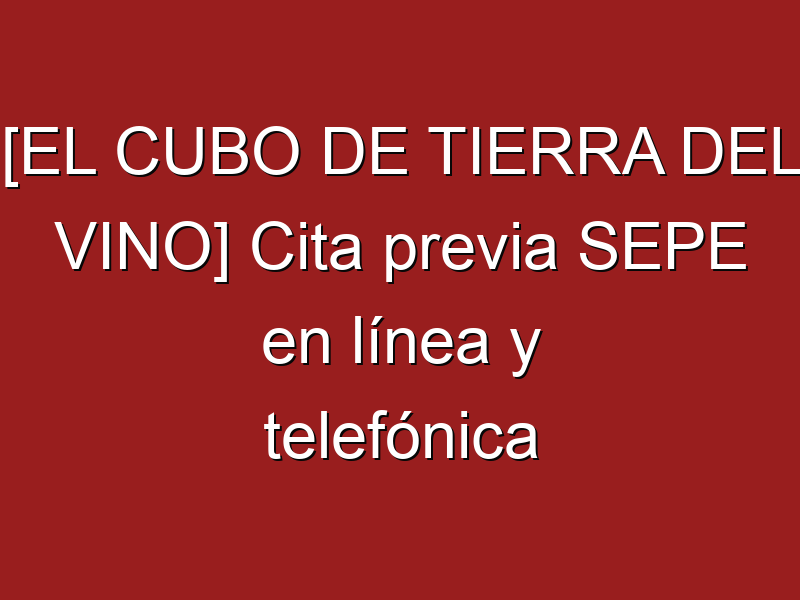 [EL CUBO DE TIERRA DEL VINO] Cita previa SEPE en línea y telefónica