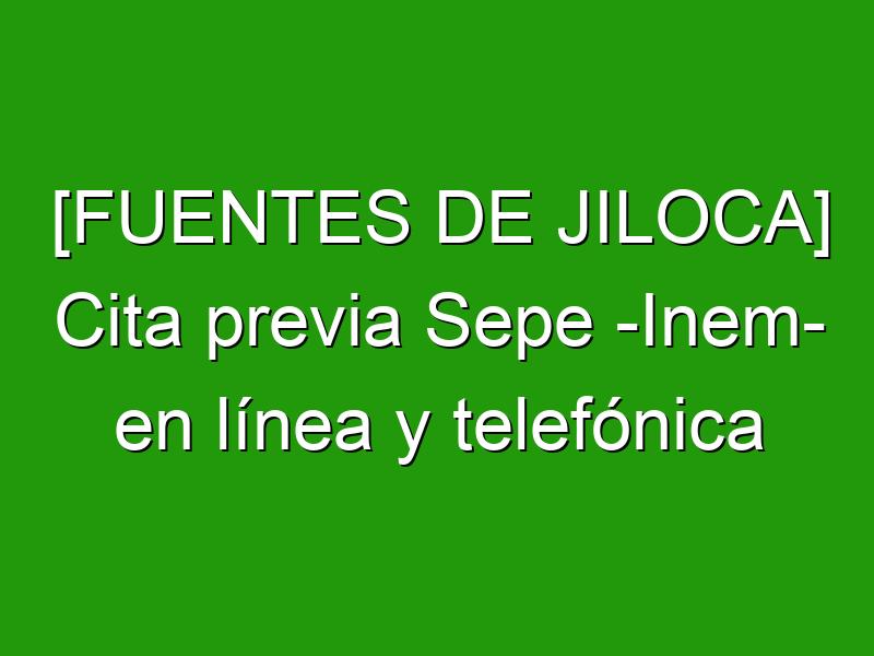 [FUENTES DE JILOCA] Cita previa Sepe -Inem- en línea y telefónica
