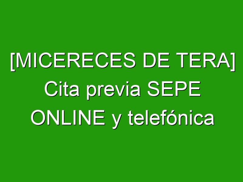 [MICERECES DE TERA] Cita previa SEPE ONLINE y telefónica