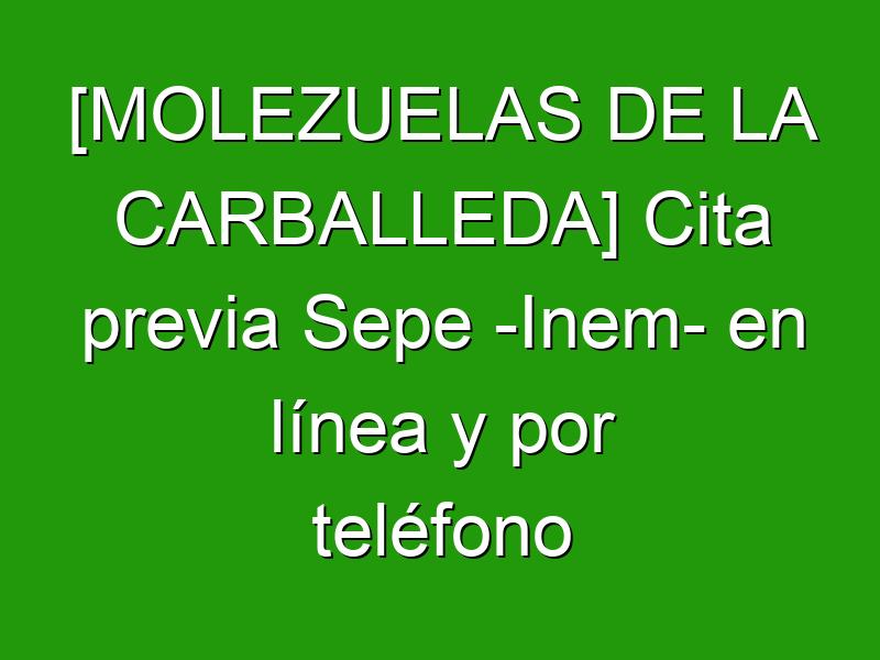 [MOLEZUELAS DE LA CARBALLEDA] Cita previa Sepe -Inem- en línea y por teléfono