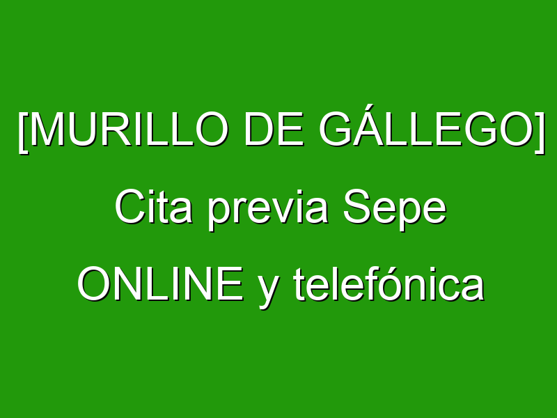 [MURILLO DE GÁLLEGO] Cita previa Sepe ONLINE y telefónica