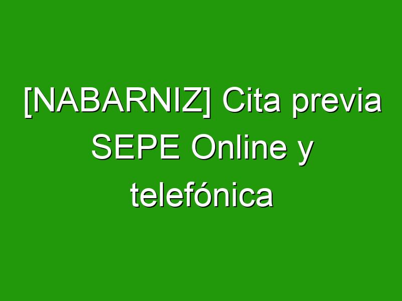 [NABARNIZ] Cita previa SEPE Online y telefónica