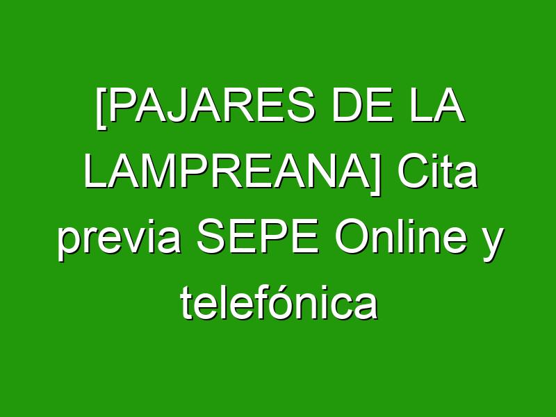 [PAJARES DE LA LAMPREANA] Cita previa SEPE Online y telefónica