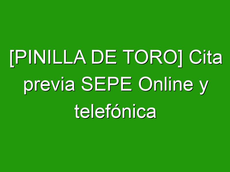 [PINILLA DE TORO] Cita previa SEPE Online y telefónica