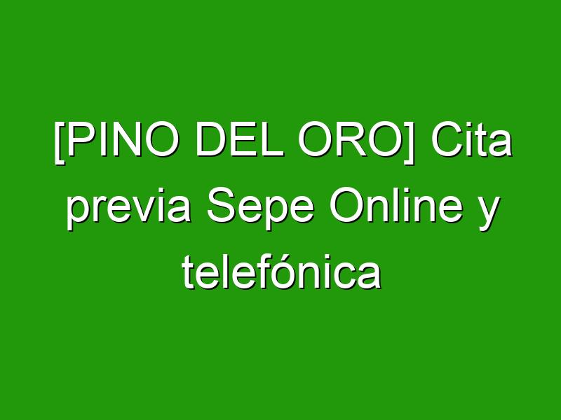 [PINO DEL ORO] Cita previa Sepe Online y telefónica