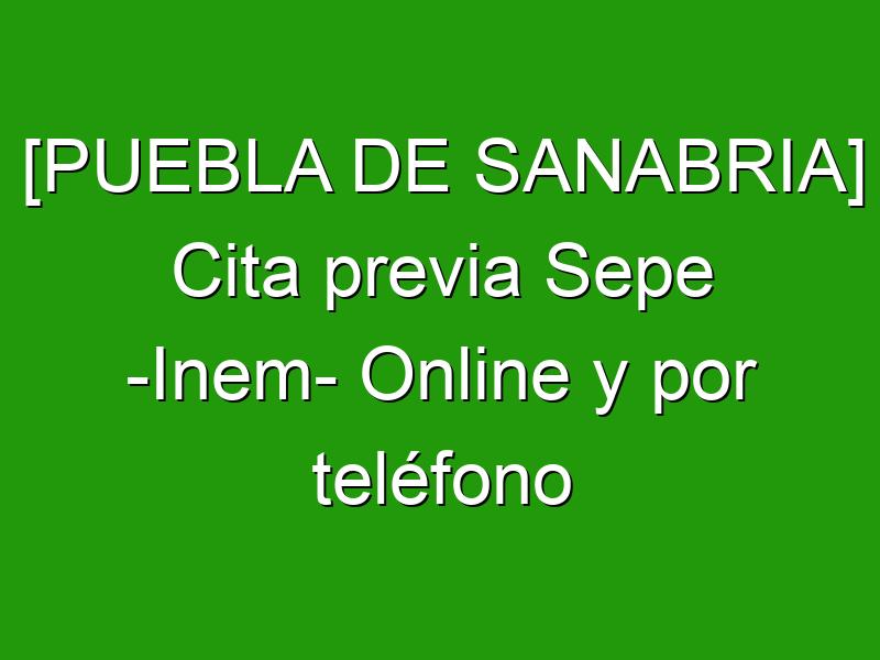 [PUEBLA DE SANABRIA] Cita previa Sepe -Inem- Online y por teléfono
