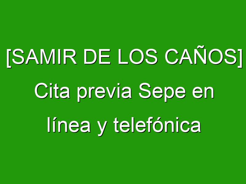 [SAMIR DE LOS CAÑOS] Cita previa Sepe en línea y telefónica