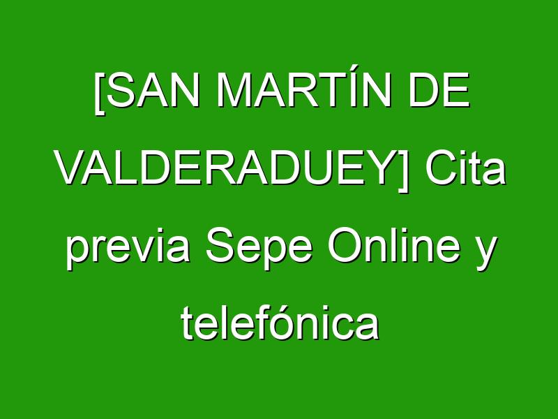 [SAN MARTÍN DE VALDERADUEY] Cita previa Sepe Online y telefónica