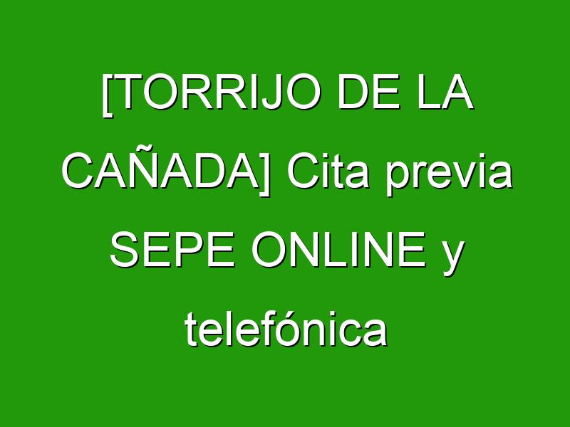 [TORRIJO DE LA CAÑADA] Cita previa SEPE ONLINE y telefónica