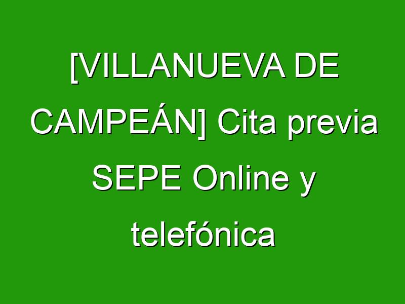 [VILLANUEVA DE CAMPEÁN] Cita previa SEPE Online y telefónica