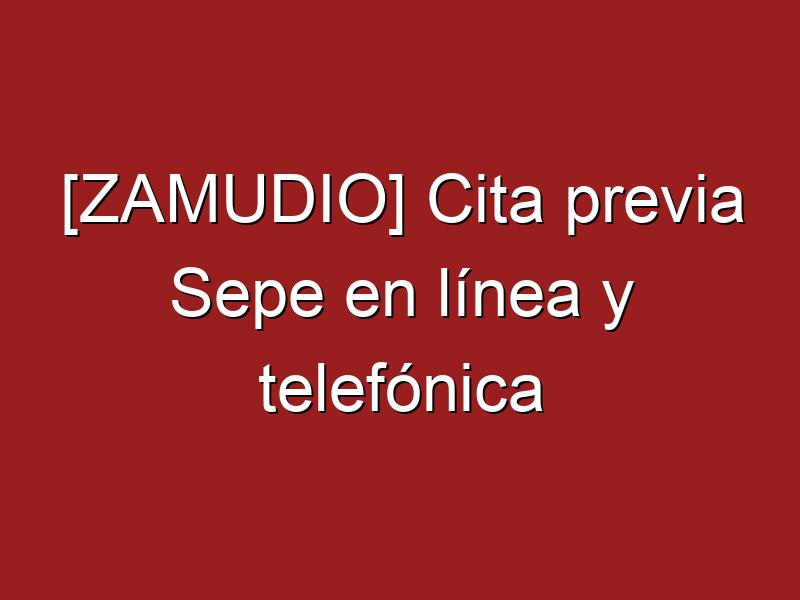 [ZAMUDIO] Cita previa Sepe en línea y telefónica
